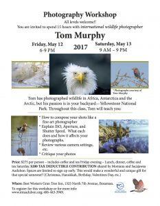 tom-murphy-flyer-final